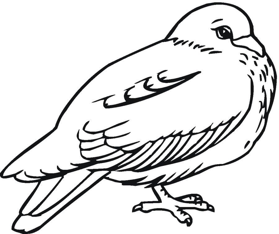 Fantastisch Heilige Geist Taube Malvorlagen Zeitgenössisch ...