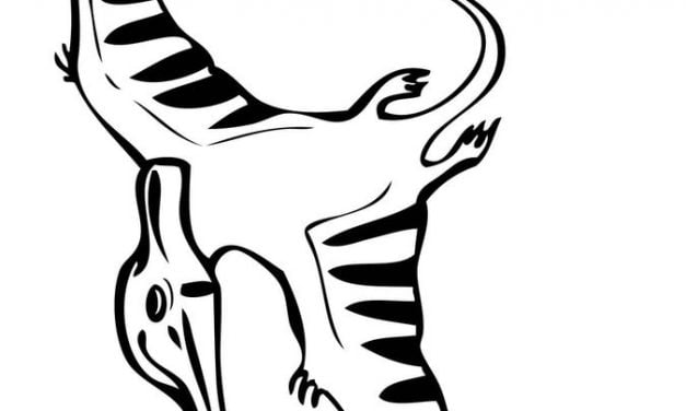 Coloring pages: Pteranodon