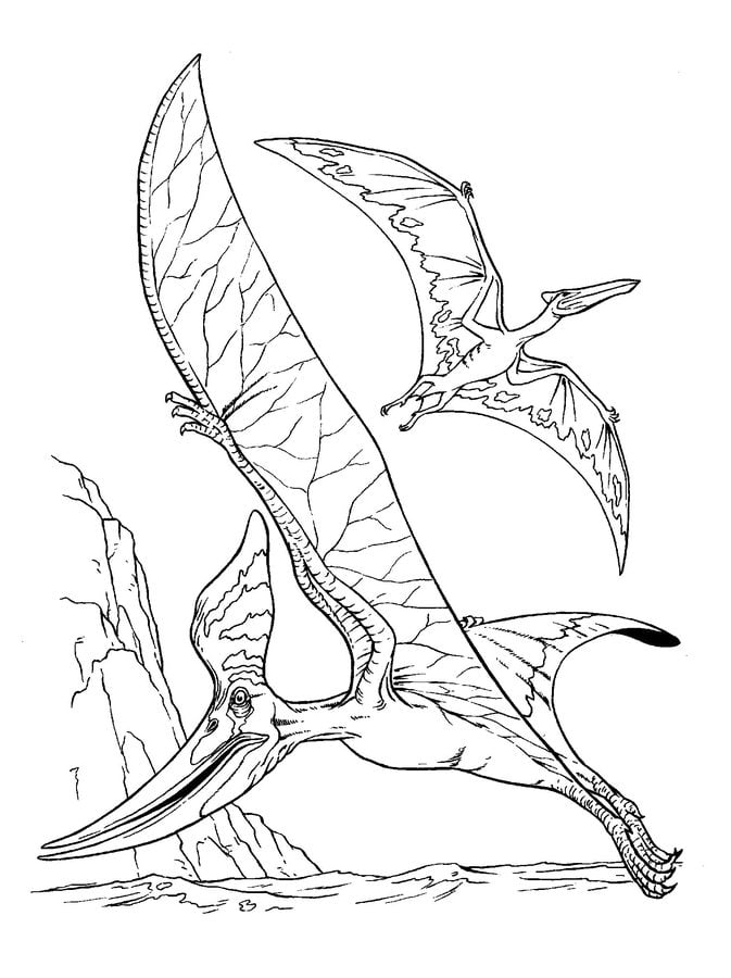 Dibujos para colorear: Pterodáctilo imprimible, gratis, para los ...