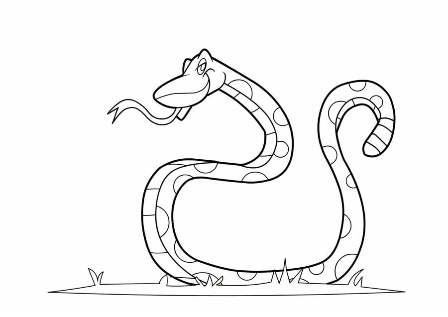 rat snake coloring pages | Coloring pages: Coloring pages: Rat Snake, printable for ...