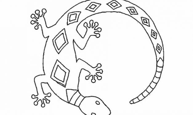 Coloring pages: Salamander