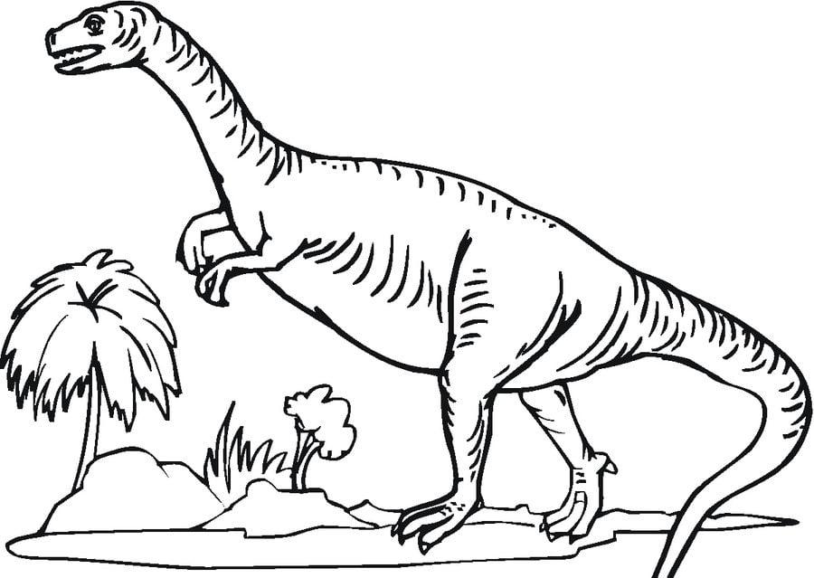 Ausmalbilder Ausmalbilder Saurischian Dinosaurier Zum Ausdrucken