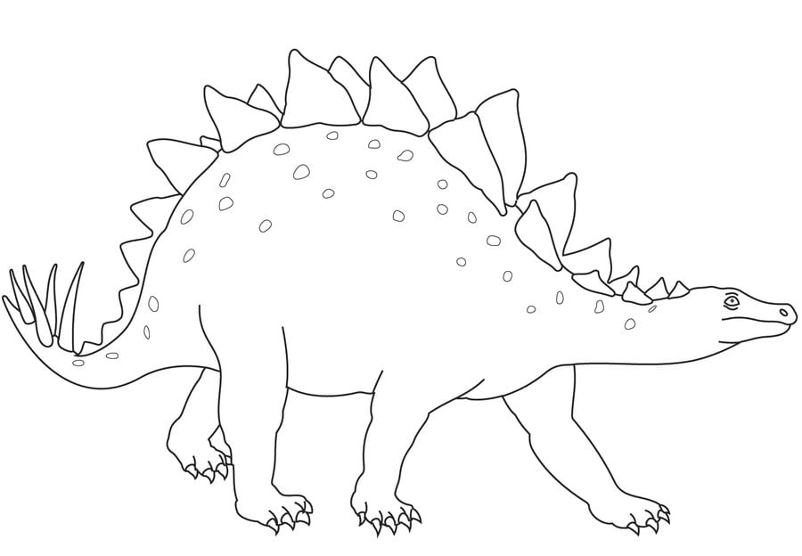 Atemberaubend Stegosaurus Druckbare Malvorlagen Galerie - Beispiel ...