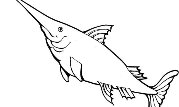 Coloring pages: Swordfish