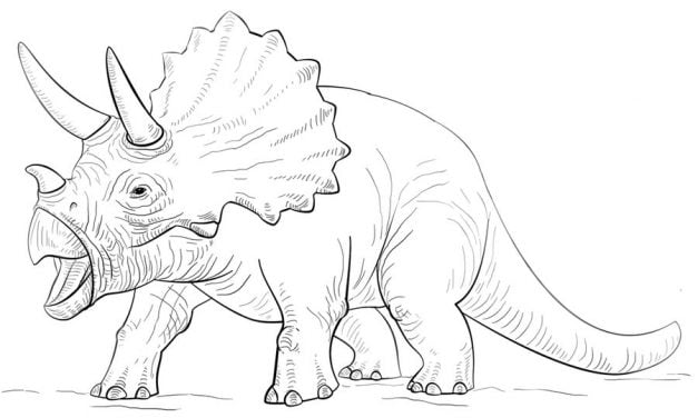 Coloring pages: Triceratops