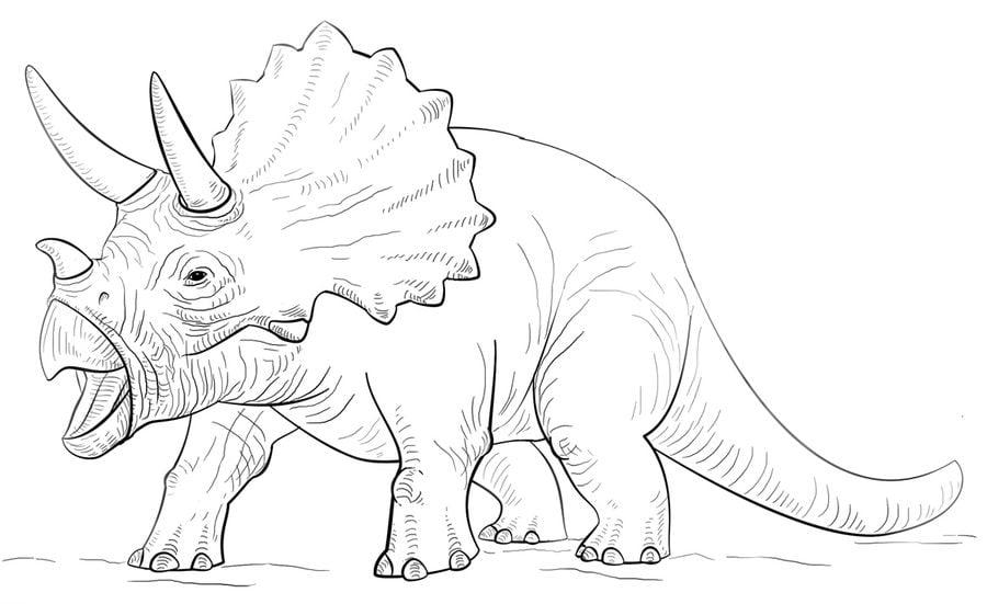 ausmalbilder dinosaurier triceratops - kostenlose