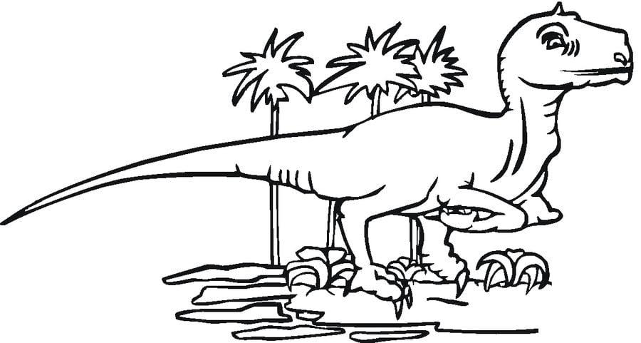 Disegni da colorare tirannosauro