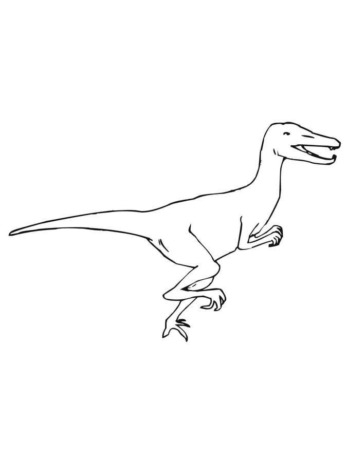 Disegni da colorare Disegni da colorare Velociraptor