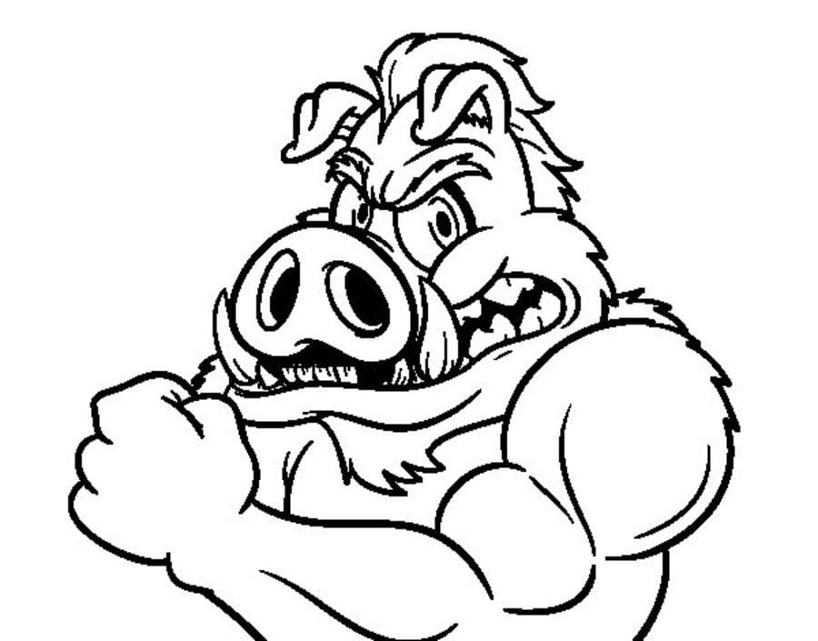 Ausmalbilder Ausmalbilder Wildschweine Zum Ausdrucken Kostenlos