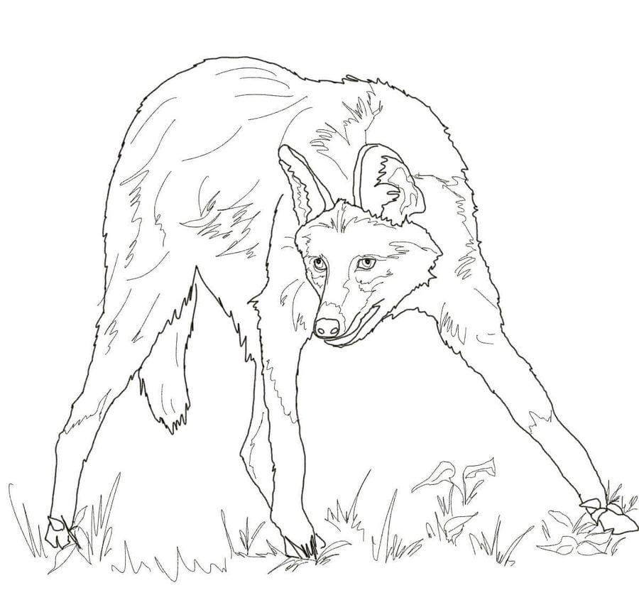 Wolf Ausmalbilder Zum Ausdrucken / Ausmalbilder fuchs ...