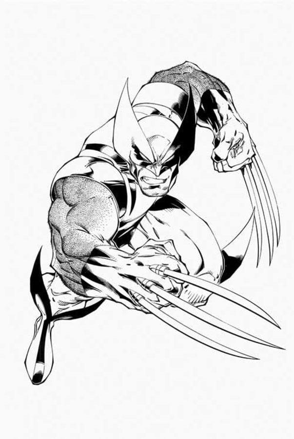 Disegni Da Colorare Disegni Da Colorare Wolverine Stampabile