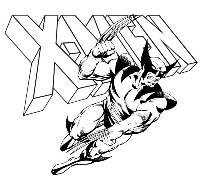Disegni Da Colorare: Disegni Da Colorare: Wolverine