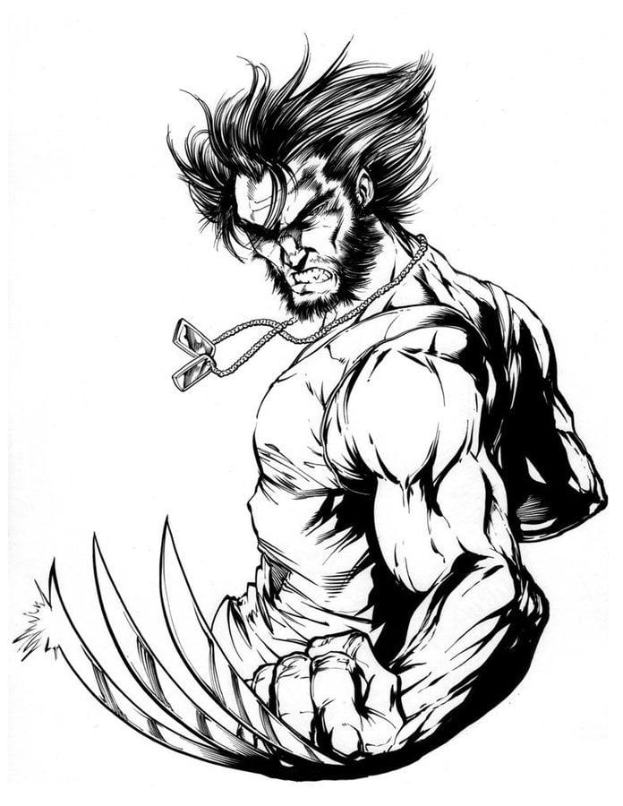 Ausmalbilder ausmalbilder wolverine zum ausdrucken - Wolverine dessin ...