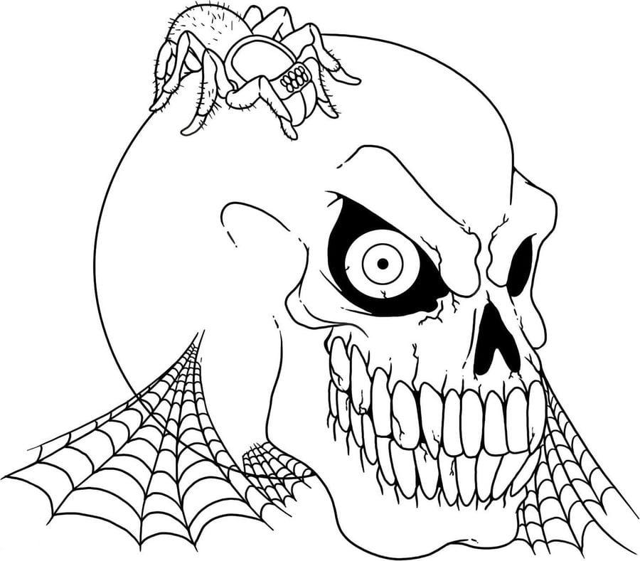 Ausmalbilder: Spinnen zum ausdrucken, kostenlos, für