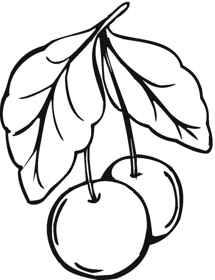 Dibujos para colorear: Cerezas imprimible, gratis, para los niños y ...