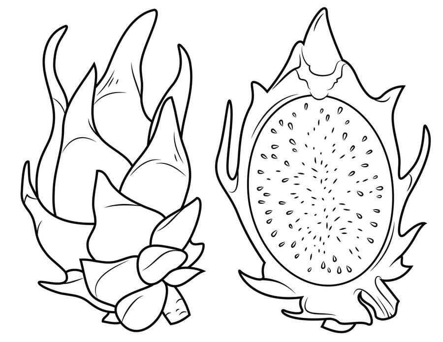 Coloring pages Coloring pages Durian printable for kids