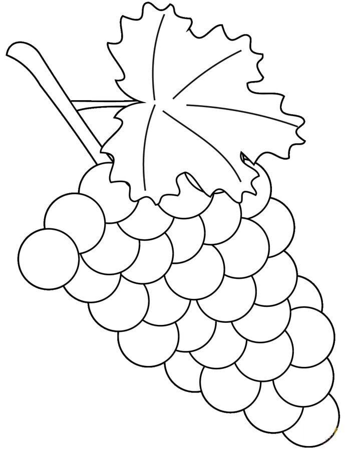 Ausmalbilder: Weintraube zum ausdrucken, kostenlos, für Kinder und ...