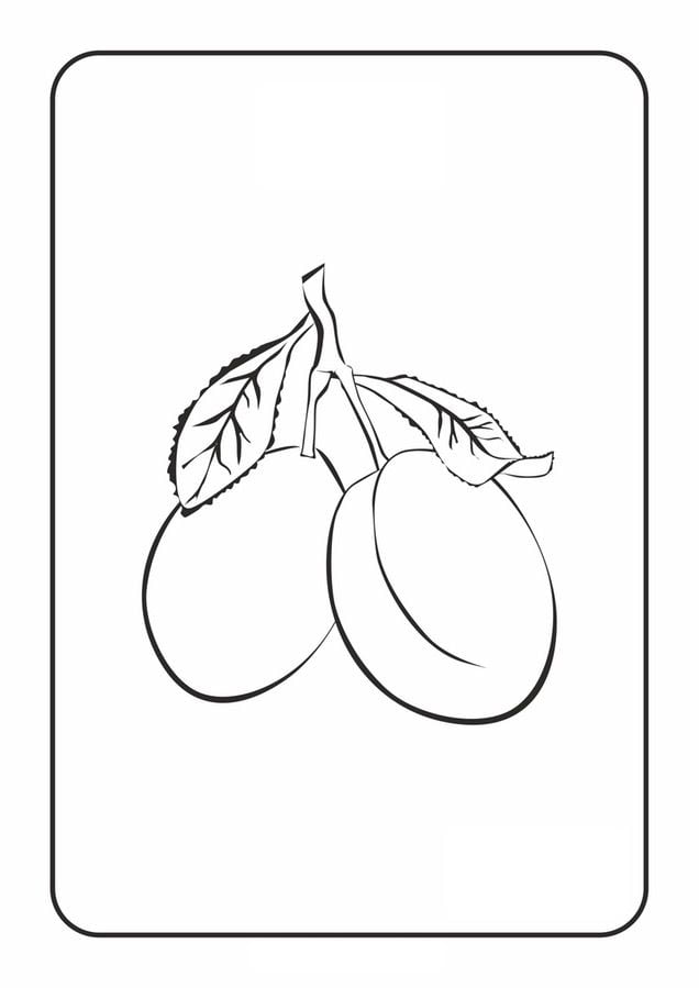 Coloring pages Plum printable