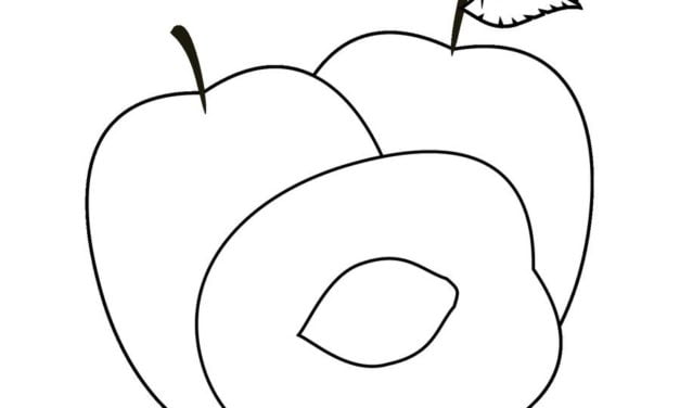 Coloring pages: Plum