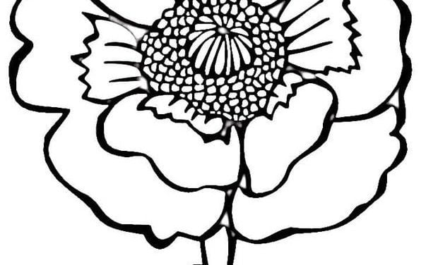 Coloring pages: Poppy