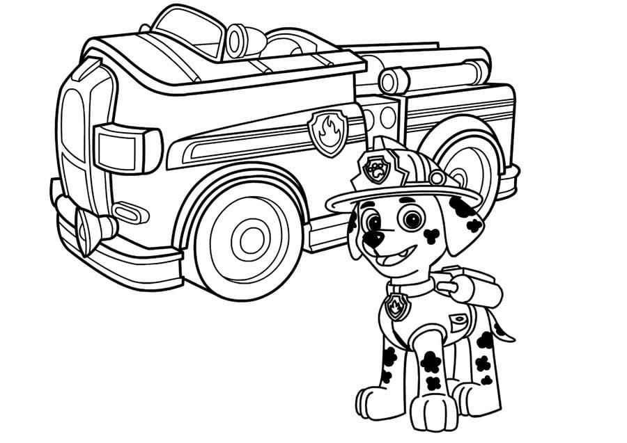 disegni da colorare  disegni da colorare  camion dei