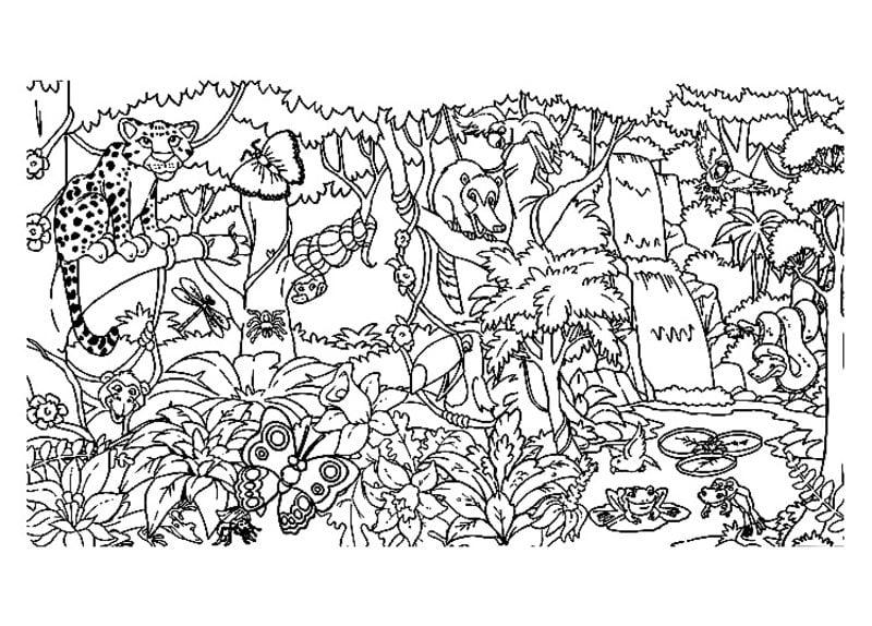 Dibujos para colorear para adultos: Selva imprimible, gratis