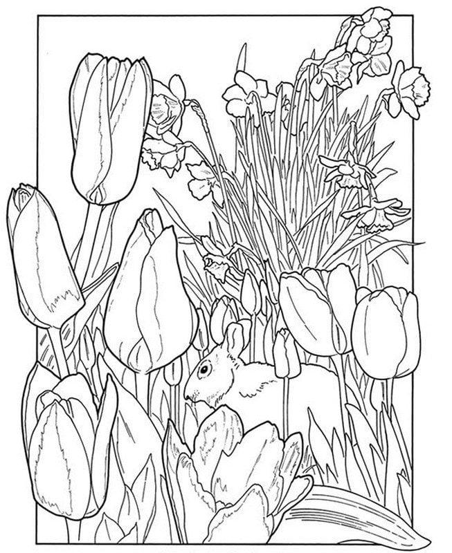 Wiosna Kolorowanki Dla Dorosłych Natura Zum Ausdrucken Kostenlos