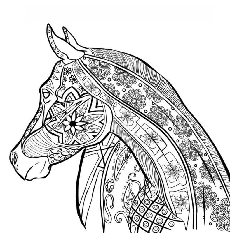 Ausmalbilder für erwachsene: Pferde zum ausdrucken, kostenlos, JPG, PDF
