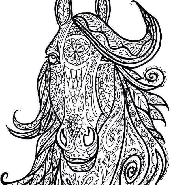 Ausmalbilder Für Erwachsene Pferde Zum Ausdrucken Kostenlos Jpg Pdf