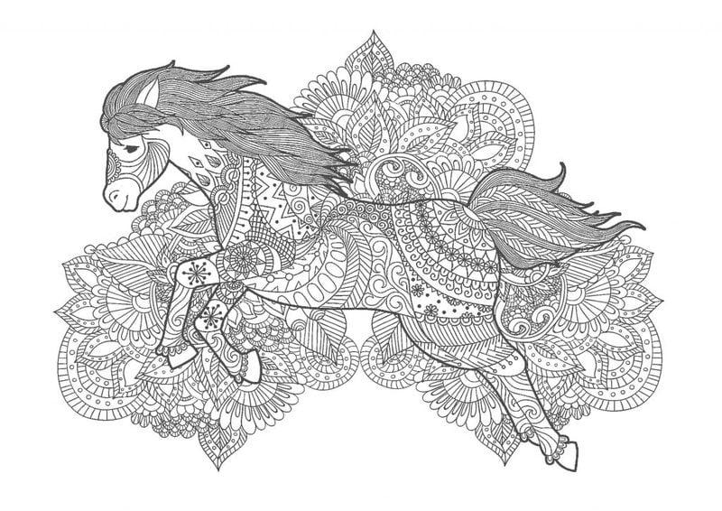 ausmalbilder für erwachsene pferde zum ausdrucken