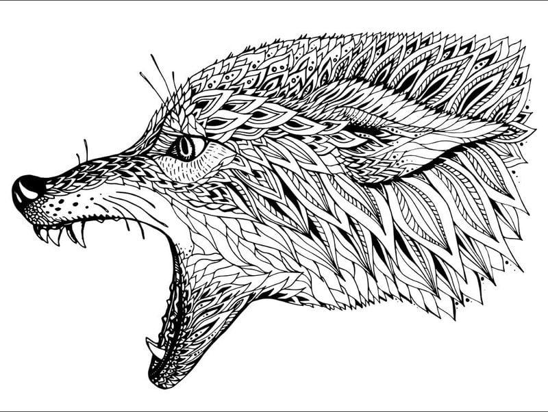 Ausmalbilder für erwachsene: Fuchs zum ausdrucken, kostenlos, JPG, PDF