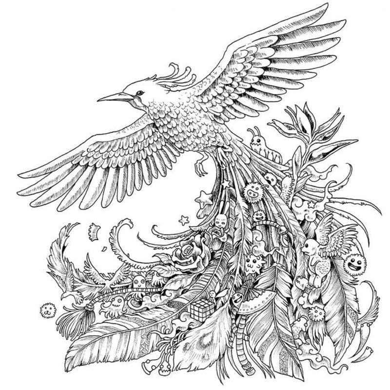 Kolorowanki Komiksy Do Druku Za Darmo Dla Dzieci I: Kolorowanki Ptaki Kolorowanki Dla Dzieci