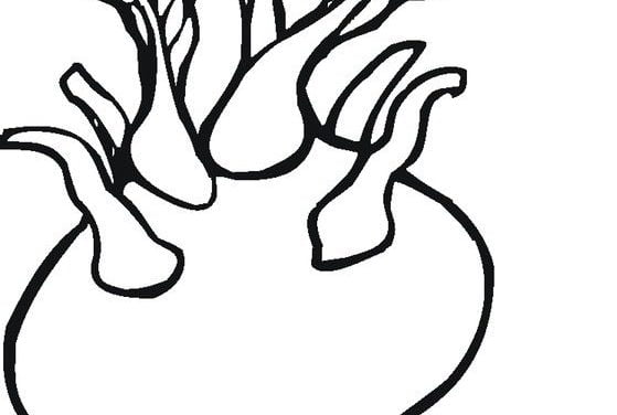 Coloring pages: Turnip