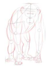 Szympans Nauka rysowania Zwierzęta